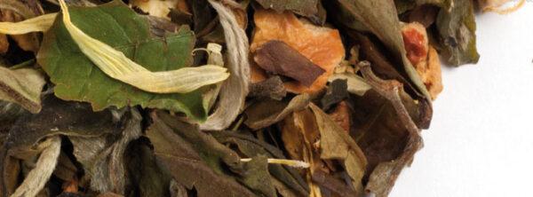 Holunderblüte-Pfirsich